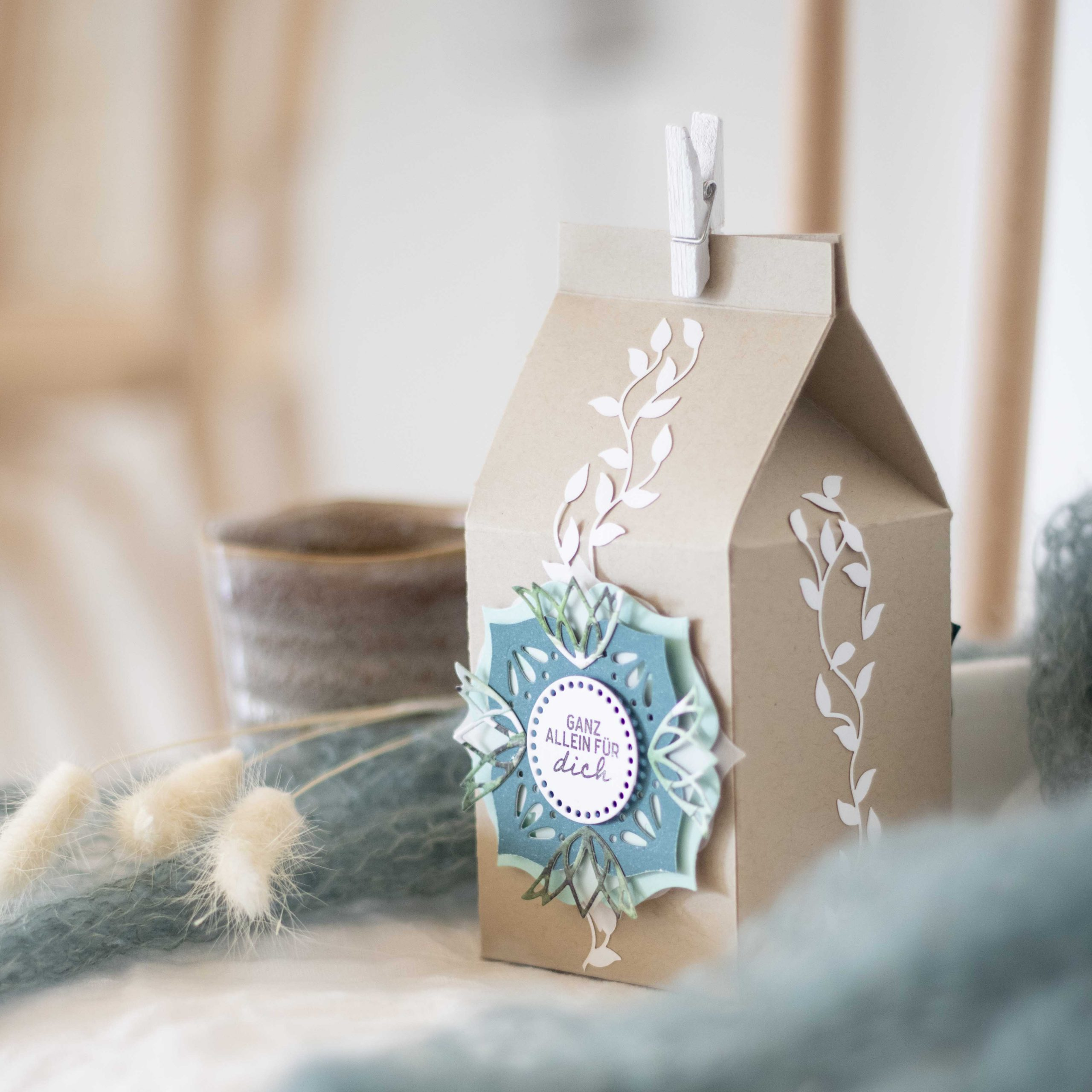 Kleinke Milchkarton Verpackung
